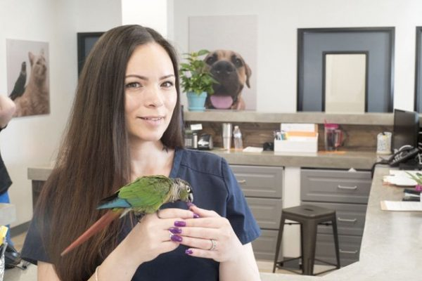 A team member holding a green and red bird on her hand