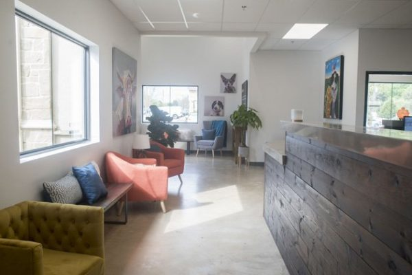 The comfortable waiting area in Sam Bass Veterinary Wellness